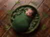 newborn_0065