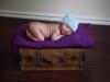 newborn_0289