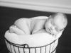 newborn_0307