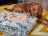newborn_0329