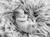 newborn_0365