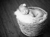 newborn_0383