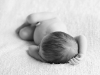newborn_0387