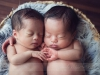 twin_0012