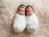 twins_0008