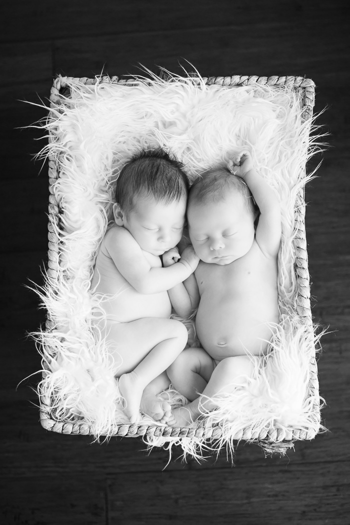 newborn, twin, twins, houston, photographer, photography, baby, babies, b/w, black and white