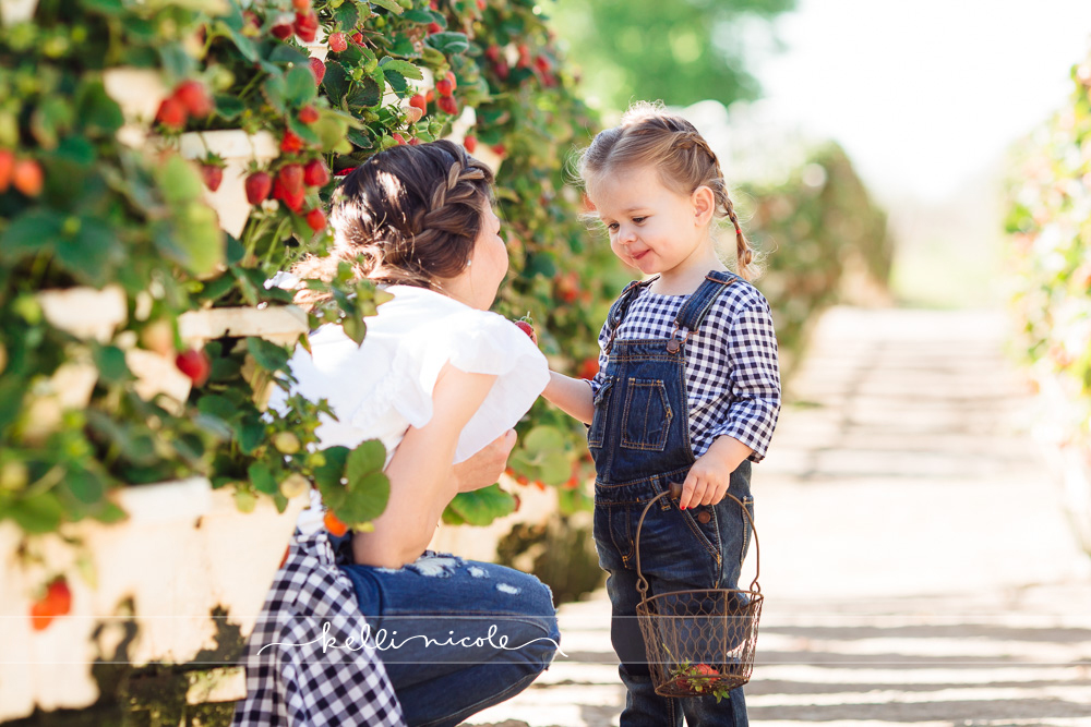 strawberry picking, blessington farms, houston, strawberries, farms, farm pictures, strawberry photoshoot, family, mom and me, mommy and me, mom and daughter, toddler, two years old, overalls, color, eating strawberries, kelli nicole photography, houston family photographer, houston family photography