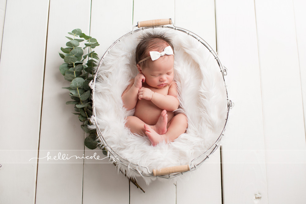 posed, newborn, photography, session, photo shoot, houston, texas, kelli nicole photography, baby girl, color, newborn photography, houston newborn photographer, studio, newborn boy, newborn posing, newborn photography tutorial, studio newborn lighting, paul c buff einstein lighting, baby girl, white wood backdrop, white and pink newborn, eucalyptus, green and white, greenery
