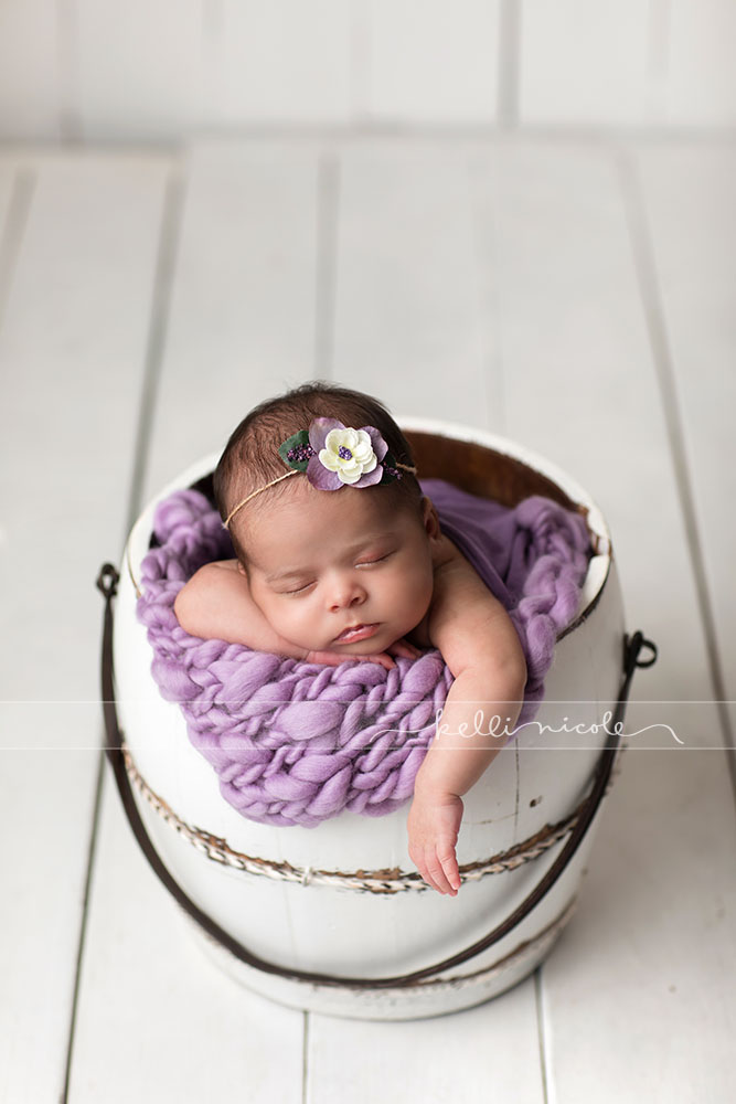 posed, newborn, photography, session, photo shoot, houston, texas, kelli nicole photography, baby girl, newborn photography, houston newborn photographer, studio, newborn girl, newborn posing, newborn photography, studio newborn lighting, paul c buff einstein lighting, newborn photographer houston, four weeks old newborn, purple