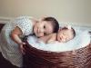 newborn_0349
