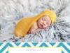 birthannouncement14