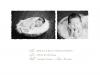 birthannouncement15back