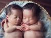 twins_0014